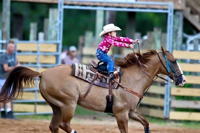 rodeo.thumb.jpg.68cbed5ac24327db1867ecc3