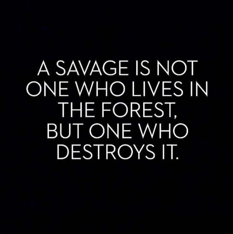 savage.jpg