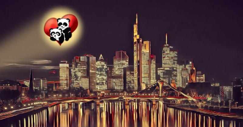 Shaggers_Facebook_Banner_CityLight.jpg.0