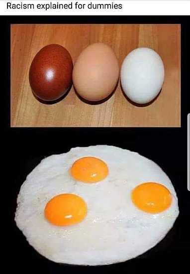 5d4c213362ae6_racismfordummies.jpg.0cf84