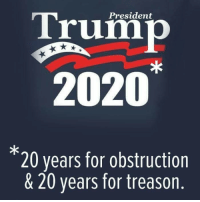 5d8b3d2108eb7_thumb_president-trum-2020-