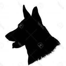 dogmedal.jpg