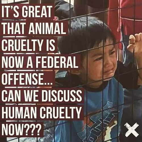 5de22d9c17af4_childcruelty.jpg.6ead2897a
