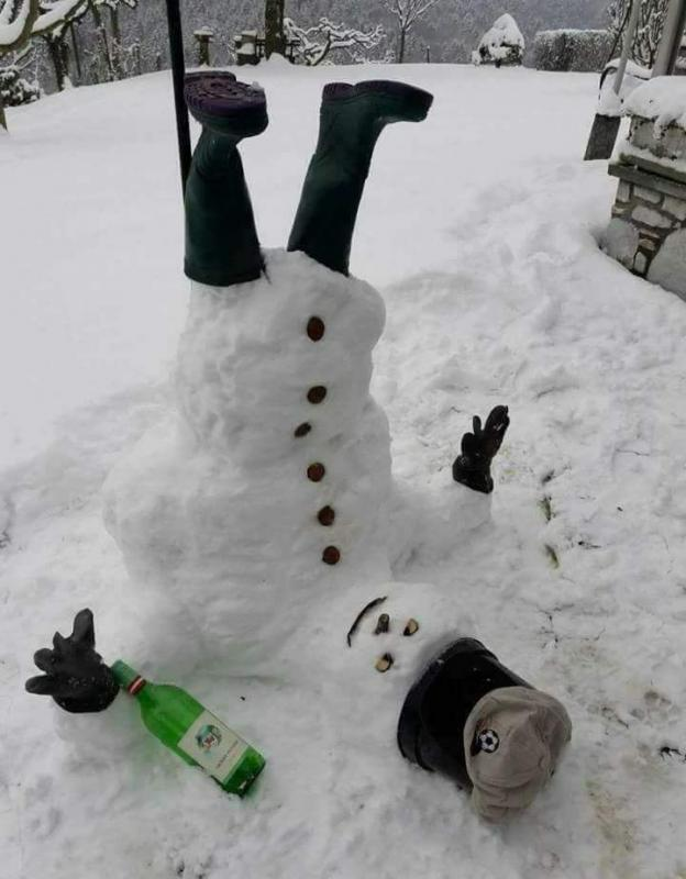 snowman.jpg.1f19275f8d05caf20f1820e6e45d