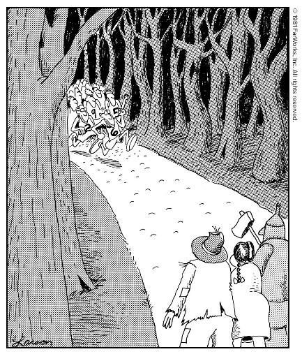 The Far Side Comic Strip by Gary Larson - Official Website TheFarSide com.jpg