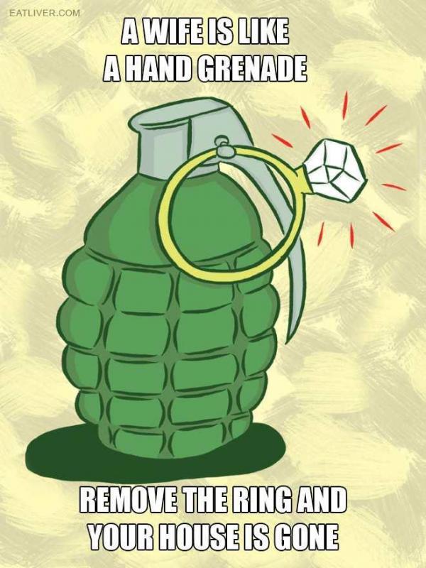grenade.jpg.4c03220e045f40e17571fd547e88