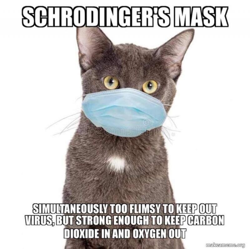 schroedingers_mask.jpg.cbaf0a8b2810bb75b