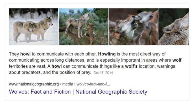 howler.JPG.e10b2d35fd1bbd45f42e7c162b3a7