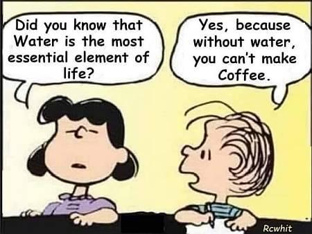 coffee.jpg.dd218bf44aee27352c25ef775df7f