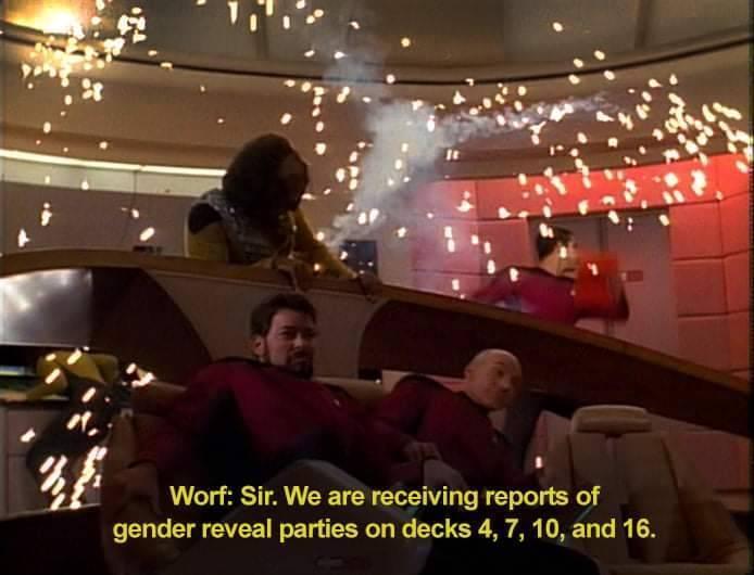 gender_reveal.jpg.3e88b7131bb95cf7371305