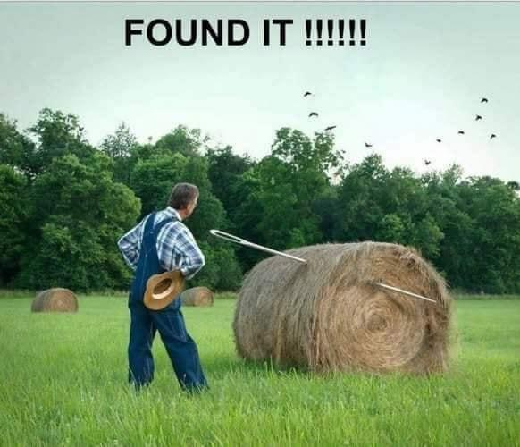 haystack.jpg.e6e90a5de1fa3080c5b8970acdd