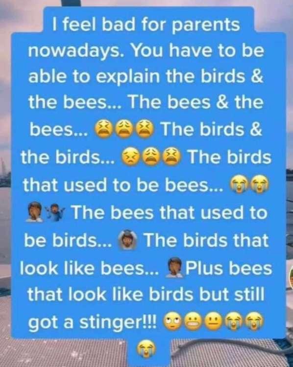 BirdsandBees.jpeg