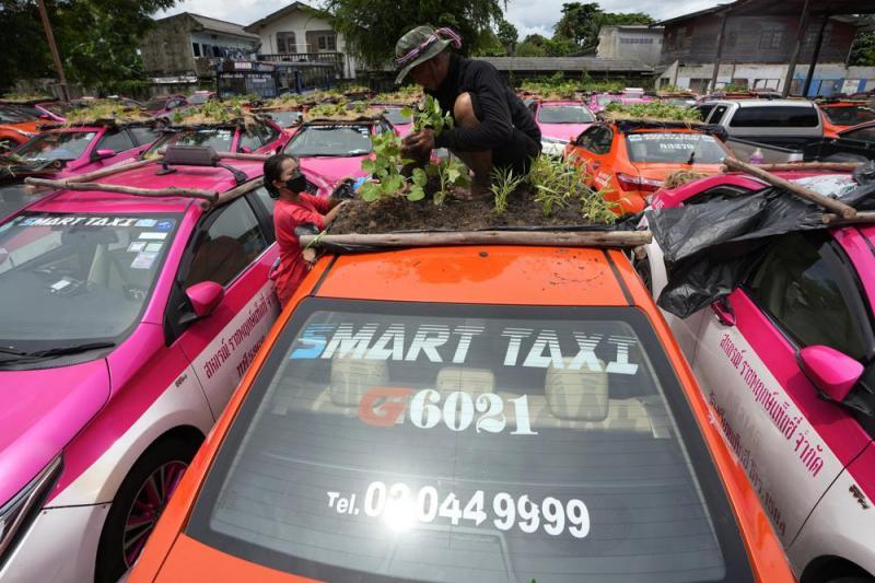 6146f15a4bf57_smarttaxi.jpeg.2b21b91f952