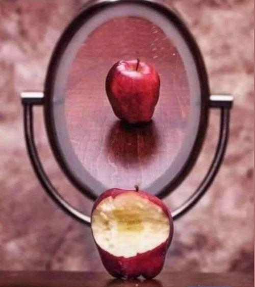 apple1.JPG.03ebd09e3a20d86c5dfac7599c6cc