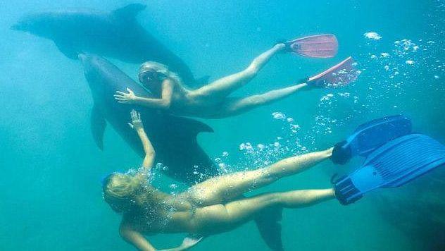 письки под водой фото